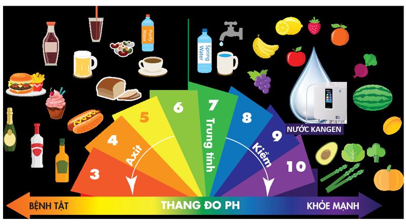 Thang đo pH chỉ ra tính axit và tính kiềm của các loại thực phẩm hàng ngày